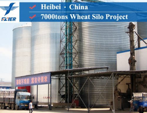 7000tons Grain Silo Project in Heibei, China