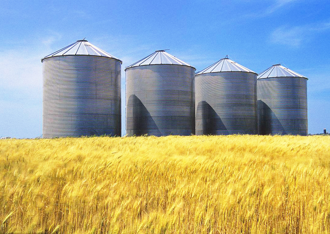 The Advantages Of Using Silos To Store Grain Grain
